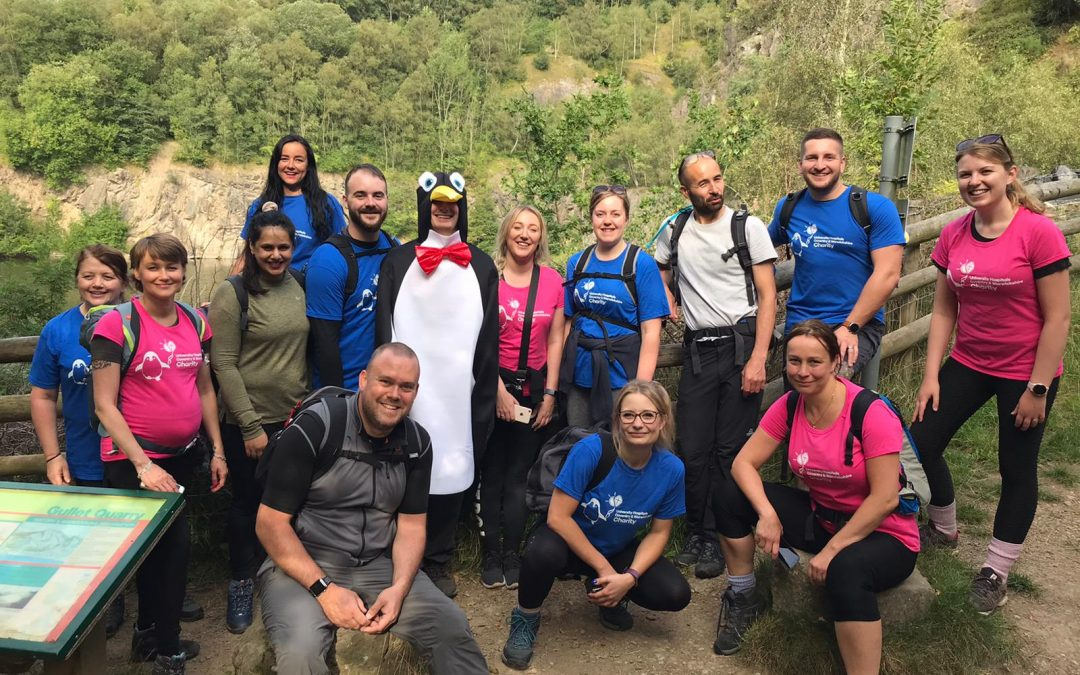 A 'Waddle' of Lear Employees Team up with Penguino to Complete the Malvern's Challenge!